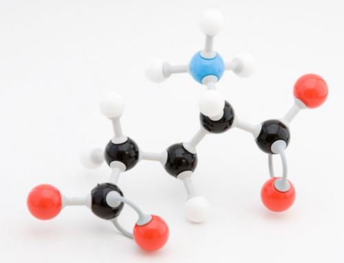 Glutamina: un aminoácido no esencial con funciones…esenciales
