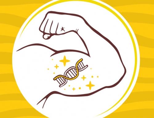 BCAA: energía y desarrollo muscular
