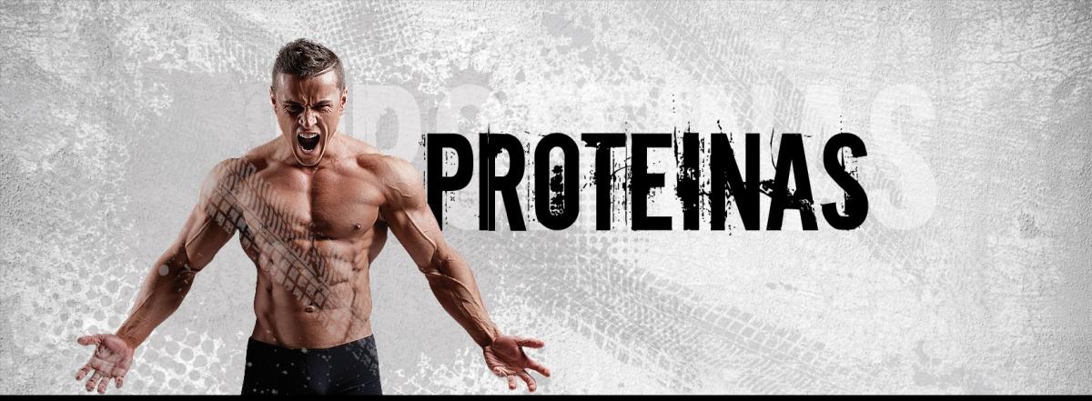 Proteínas Tegor Sport