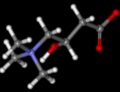 3 secretos de la L-carnitina que (igual) no conocías